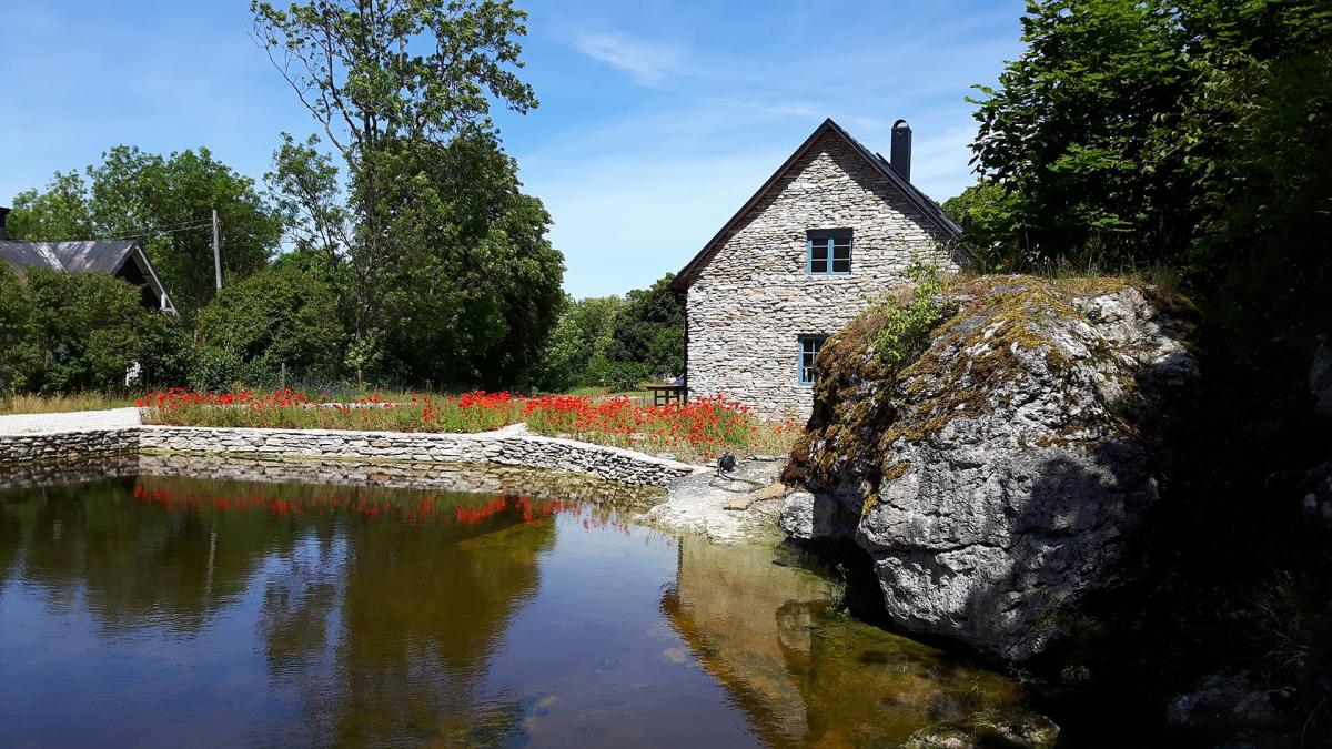 Gotland_01