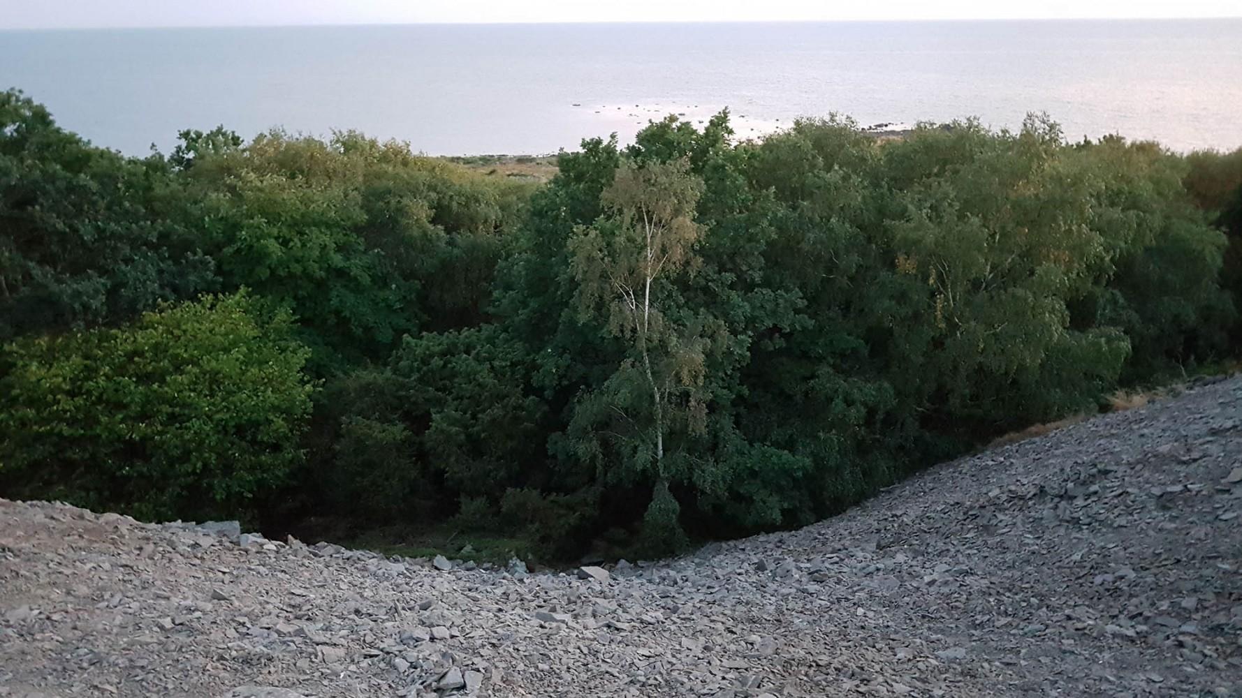 Bilrundtur_2018_webb_35