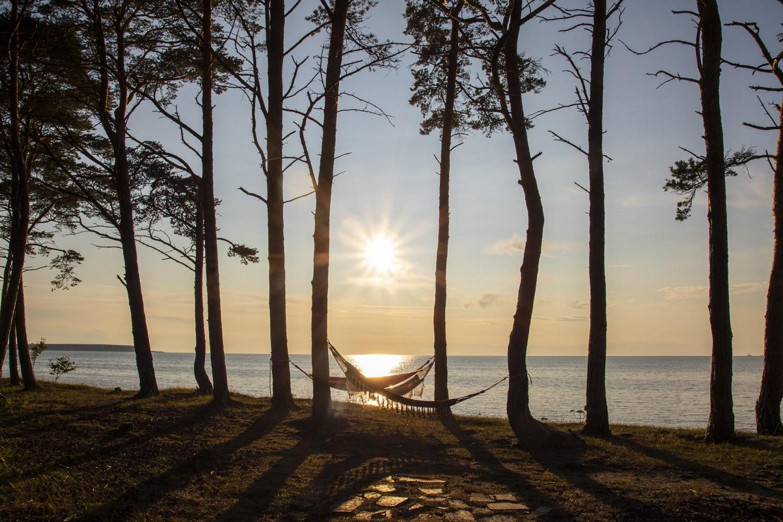 Gotland_urval_2019_26