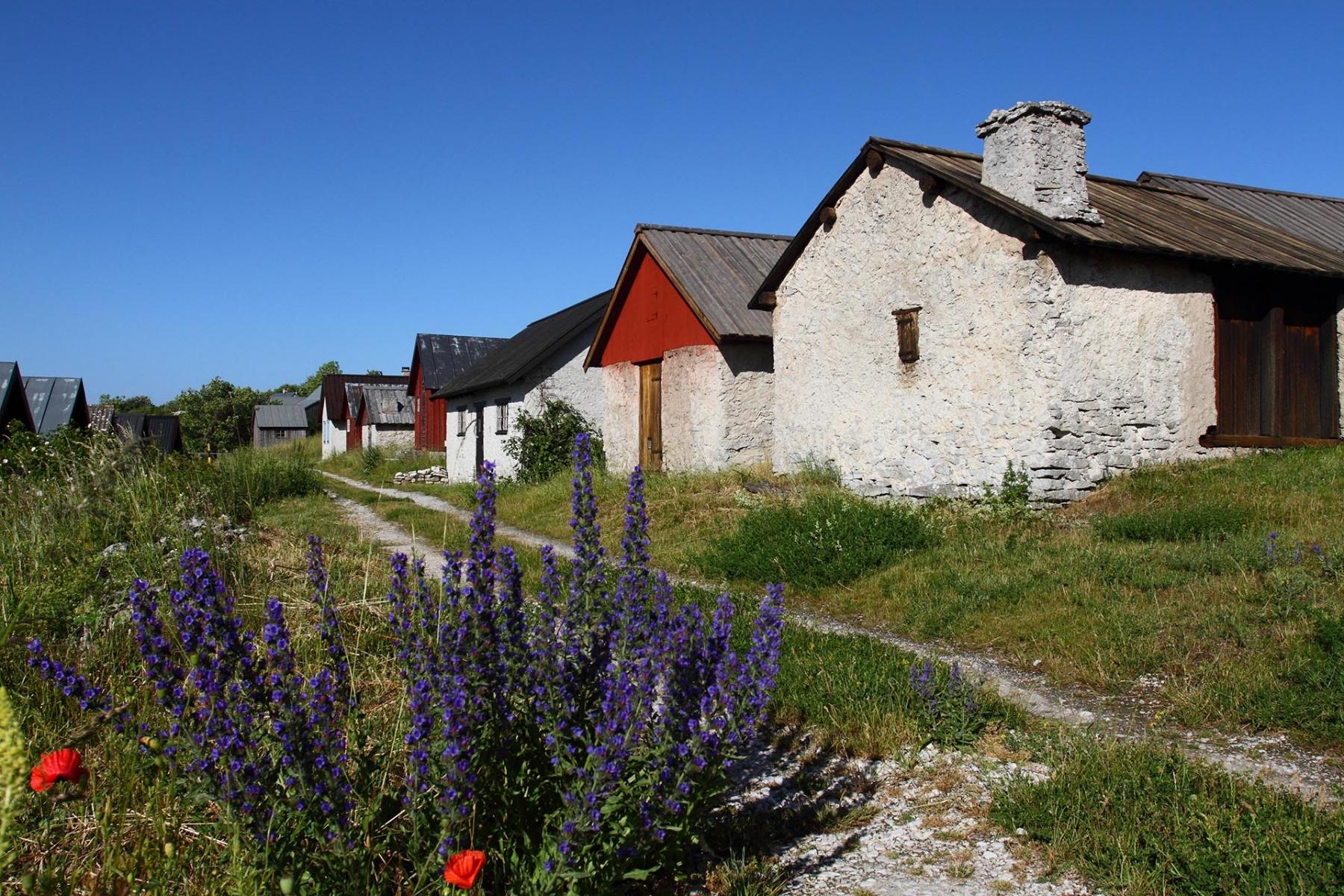 Gotland_12