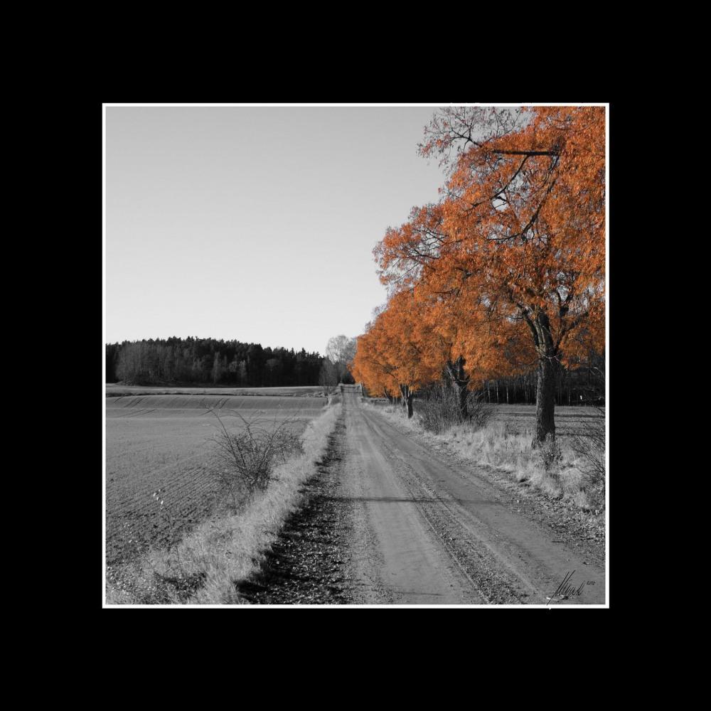Landsbygdtavlor_04