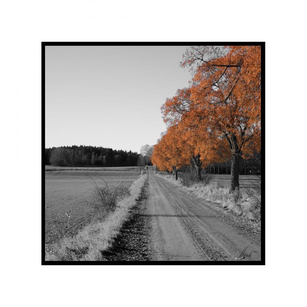 Landsbygdtavlor_05