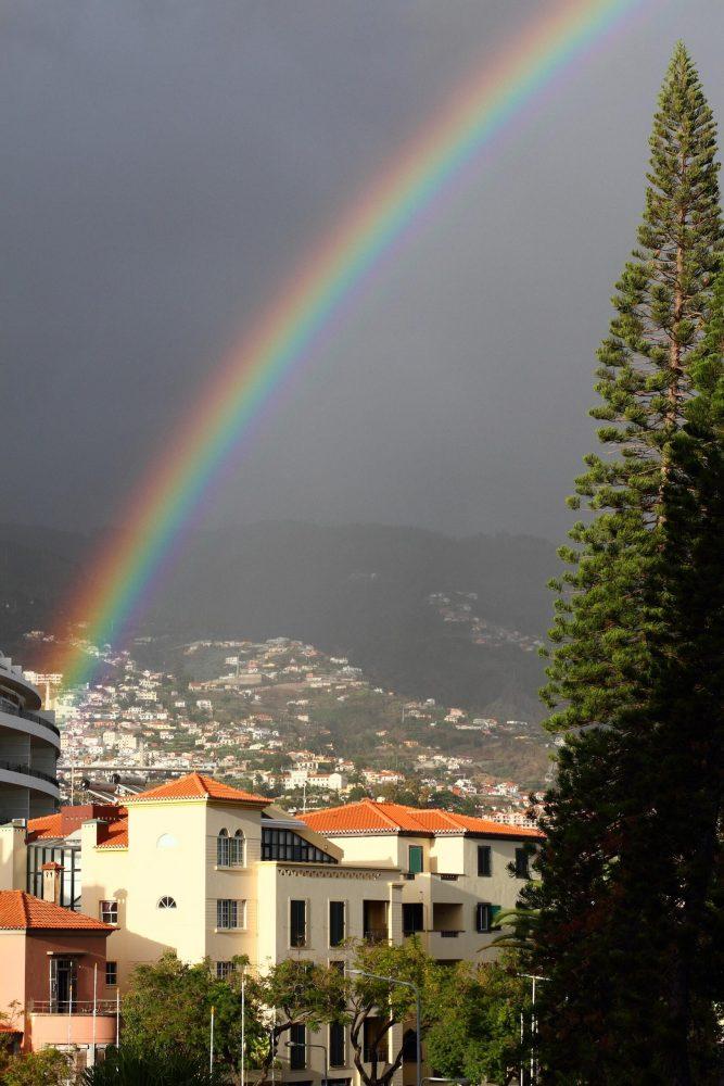 Madeira_2017_042-scaled