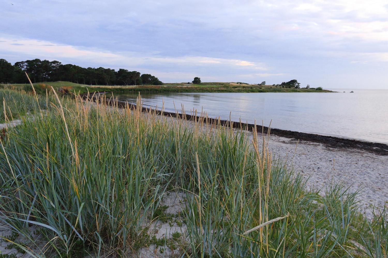 Gotland_urval_2019_12